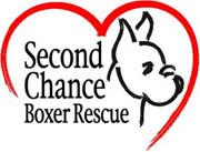 Scbboxer rescuephoto180