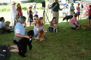 Woofstock show