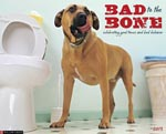 Bad to bone cal photo150