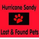Hurricane sandy 150 photo