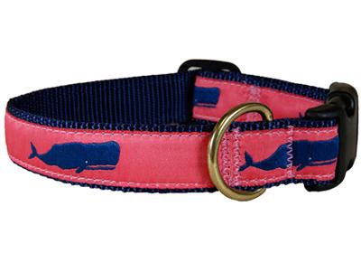 L1-collar03-980400