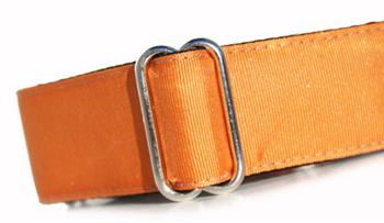 350GingerOrangeCollar_large