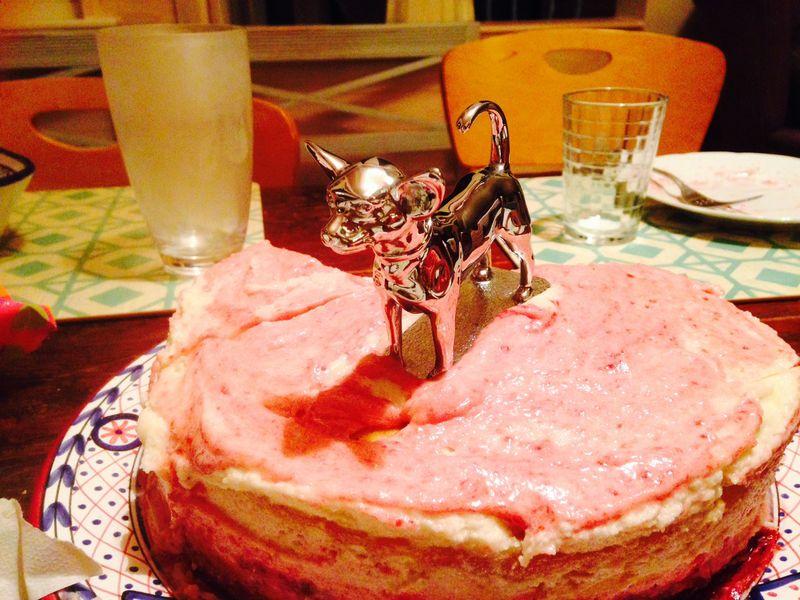 Chihuahua hood cake 150