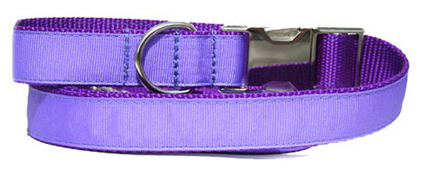 PurpleUrbanLeash_large